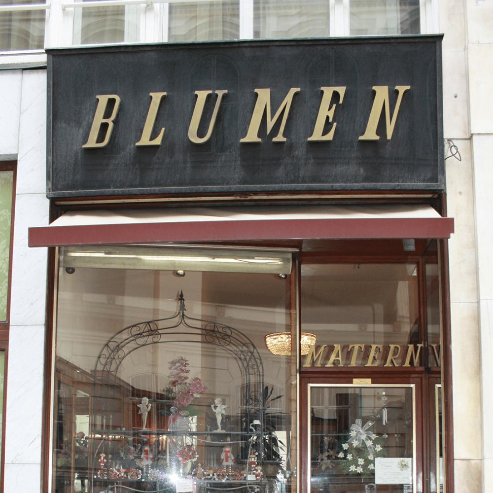 Vienna-Sign-Tour-Blumen-Matern