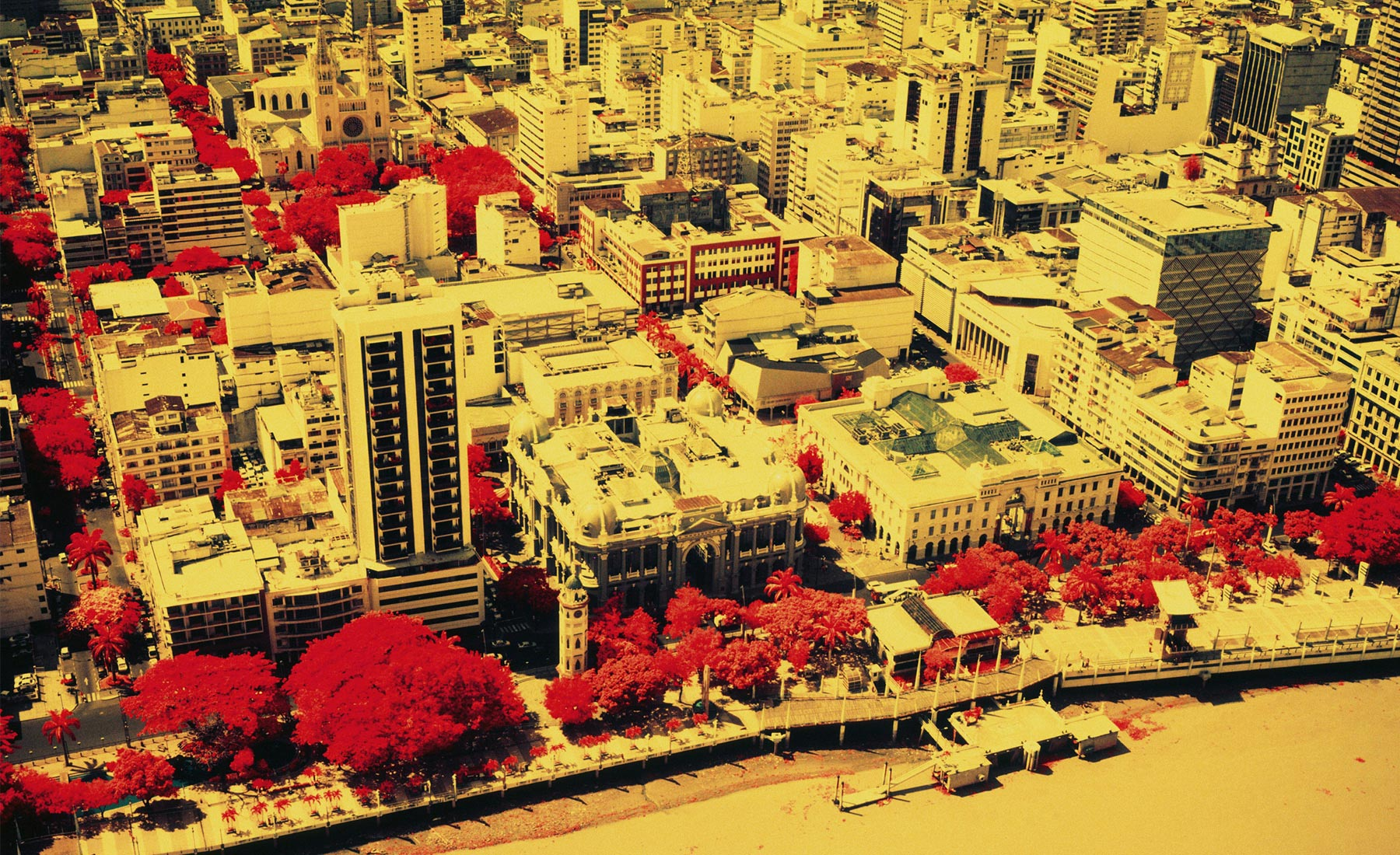 Vicente-Munoz-Infrared-Photography-Guayaquil-Urban
