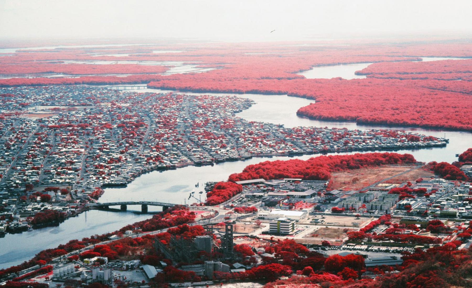 Vicente-Munoz-Infrared-Photography-Guayaquil