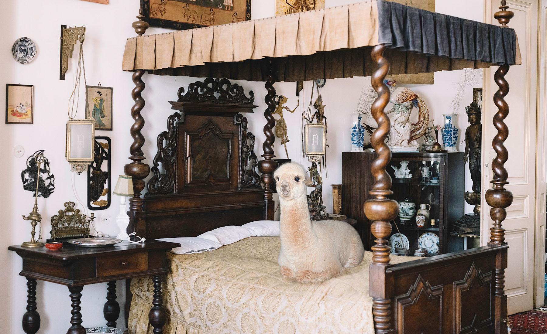 Daniel-Gebhardt-de-Koekkoek-Alpaca-bedroom