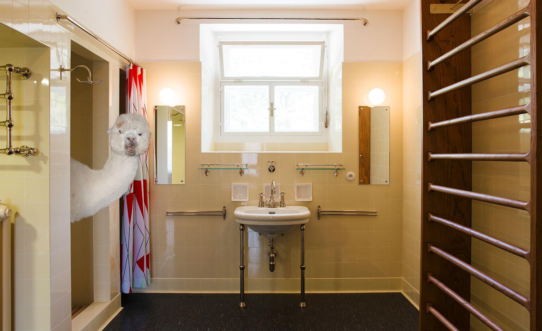 Daniel-Gebhardt-de-Koekkoek-Alpaca-bathroom