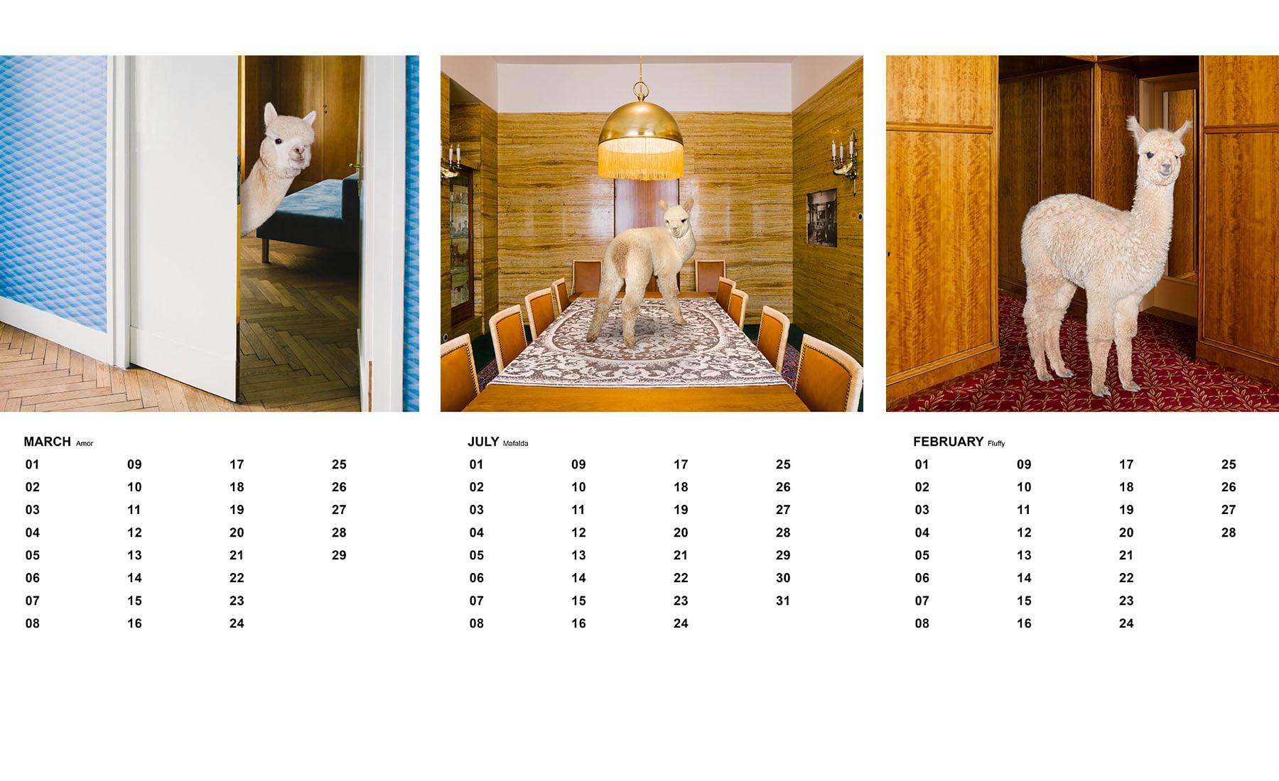 Daniel-Gebhardt-de-Koekkoek-Alpaca-Calendar-Exzerpt